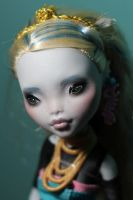 Monster High Repaint 9 - 2 by Armeleia