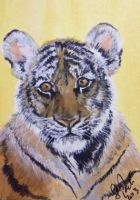 ACEO Watchful Eyes #2 by annieoakley64