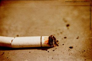 ..CigaR.. WallpaPer... by Anotheroutsider