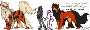 Arcanine Size Chart attempt by SadWhiteRaven