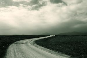 empty road... by d-choonga
