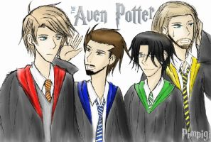 The Aven Potter by pimpigi