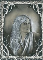 Thranduil Brown by ebe-kastein