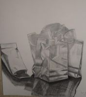 Bags - still life by naturally-morbid