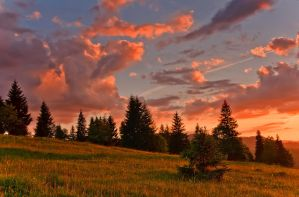 Sunset colors. by lica20