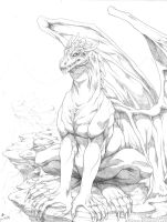 +Dragon+ PLEASE FULL VIEW by mreviver