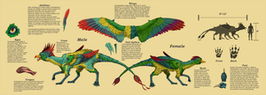 Perdragadon Species Sheet by Laserbot