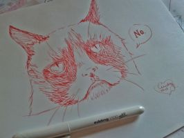 Grumpy cat by Cindy-R