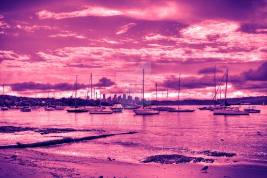 Watsons Bay by heads-up
