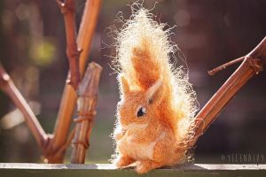 Felted Squirrel by ivyimagery