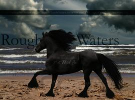 Rough Waters by EquideDesigns