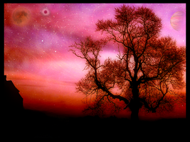 -:Under the harvest moon:- by Hitomi2009