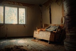 Abandoned and almost forgotten, part VI of VI by wchild