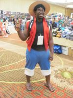Animefest '13 - One Piece 3 by TexConChaser