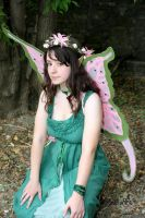 the Fairy by MiracoliCosplay
