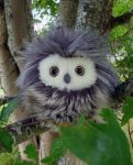 Small fuzzy owl02 by demiveemon