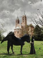 Ravens Steed_Natural Light by KYghost