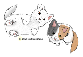BFF- Like Cat and Dog by RippedMoon