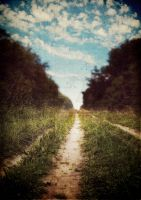 the long road home by MagpieMagic