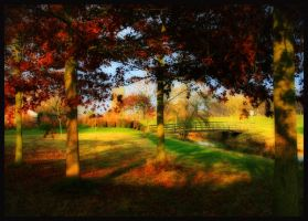 Glow of the fall by simoner