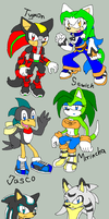 My main sonic oc (OUTDATED) by sowia