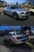 '13 Ford Mustang 5.0 by Mister-Lou