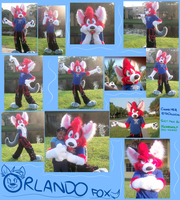Orlando Suitin' Collage by TheDoggyGal