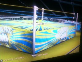 WWE '12: WWX Brawl For It All Arena by TheRumbleRoseNetwork