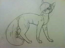 guess who? c: by icrystalline