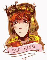 elf king by Kichi-Jakku