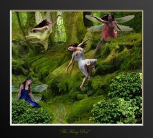 THE FAIRY POOL by SCT-GRAPHICS