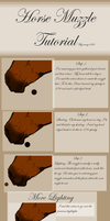 Horse Nose Tutorial by emmy1320