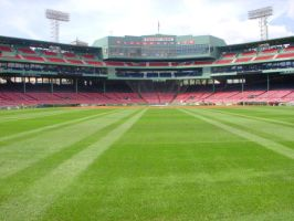 Fenway from the Field by AdinaRS