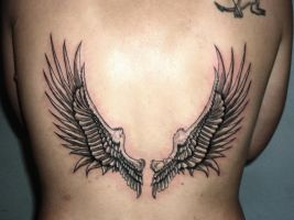 .wings by 666afx