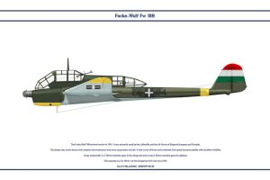 Fw 189A Hungary by WS-Clave