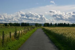 Path Along a Meadow Stock 9 by LuDa-Stock