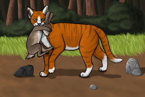 Weaselpaw {Gift} by Stoataggedon