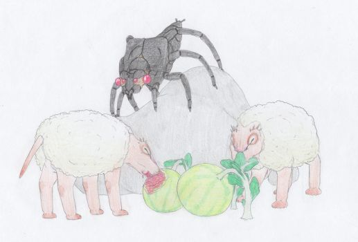 Sheep and Spiders by Biofauna25