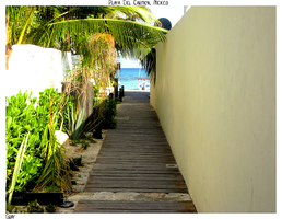 Walkway to the Beach by gray929