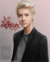 SEHUN (The Prince) by Tiahemet-Rhaine