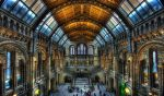 Morbid British Natural Museum by ciyzis-kirayzs