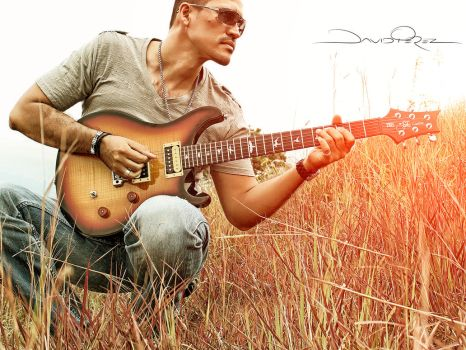 Singer with guitar against grass by davidperze