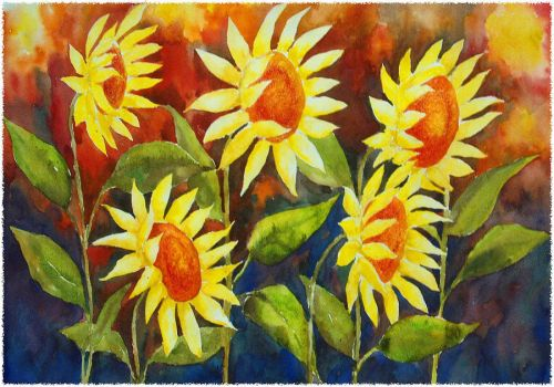 Andrea's Sunflowers... by shve