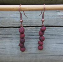 Upcycled natural seed earrings by Lost-in-the-day