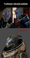 Turian Headcanon by Sorceress-Nadira