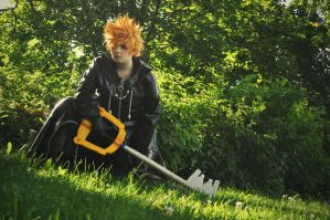 Roxas - True identity. by Millahwood