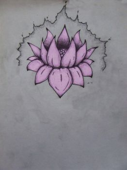Lotus by AnarchistWombat