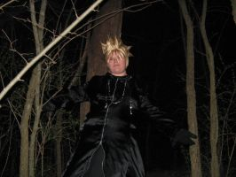 Roxas in the woods by Intelligent-Loner23