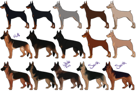 Dobermans and German Shepherd Imports [Open] by Canidae-Mayhem