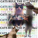 Cats Rule The Internet by Dhinas